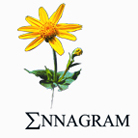 Ennagram - ENNACTIVE Standardized liquid extract or complex